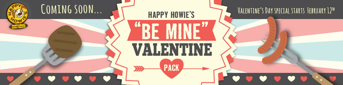 Howies_Home_banner1_ValentinePack