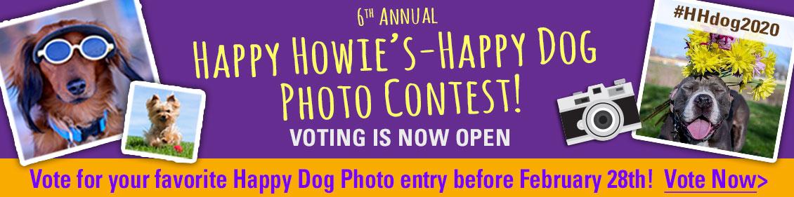 HH-contest2020-vote